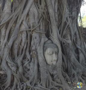 Ayutthaya. (5)