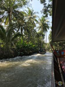 Damnoen Saduak Floating Market. (3)