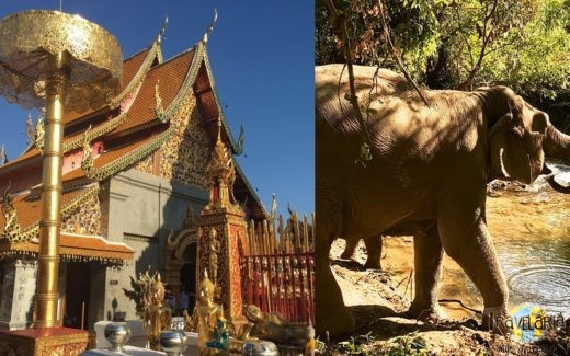 Chiang Mai – Cover.