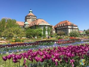 München: Botanischer Garten. (1)