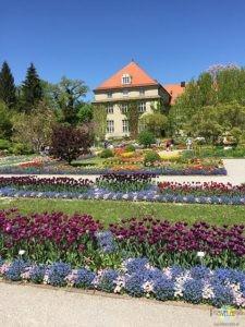 München: Botanischer Garten. (2)