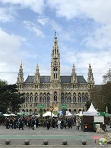 Wien Rathaus.