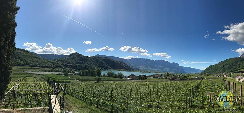 Kalterer See: Panorama.