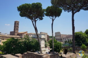 Forum Romanum: Blick vom Palatino.